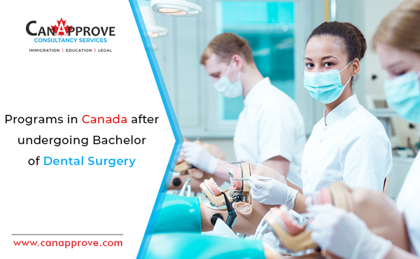 A few things to know! Opportunities in Canada after undergoing a Bachelor of Dental Surgery!